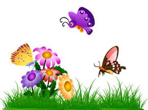 Crea la tua Oasi per farfalle